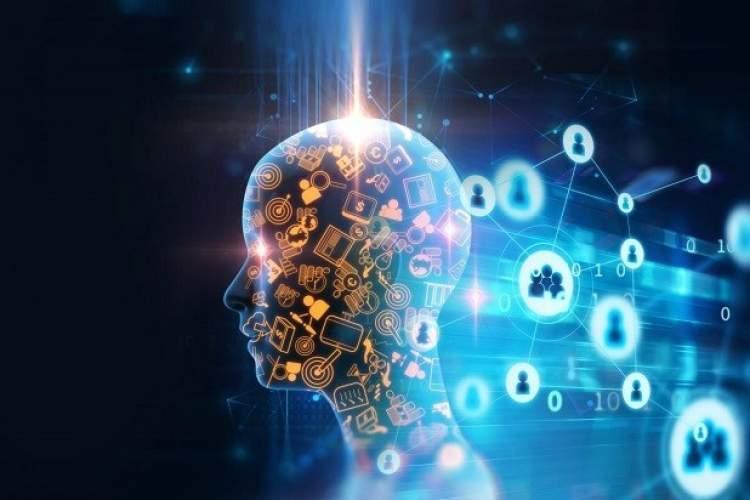 آیا با هر یادگیری مغز به طور فیزیکی تغییر می نماید؟