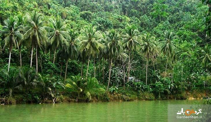 جزیره بوهول؛بهشت گم شده فیلیپین، تصاویر