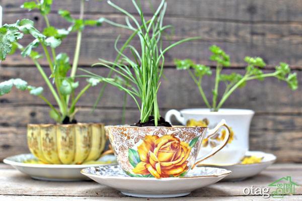 آموزش ساخت گلدان با فنجان و نعلبکی نحوه کاشت گیاه درون آن